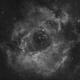 Rosette Nebula in Ha,                                Bernd Steiner