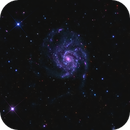 M101 - Pinwheel Galaxy - LRGB - Orion 80ED - Sirius EQ - ASI1600MM Cool,                                Rowland Archer