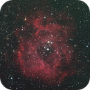Rosette Nebula in RGB,                                Colin Thomas