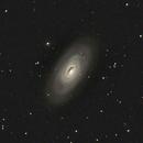 "M-64, the ""Black Eye"" Galaxy in Coma Berenices,                                Stargazer66207"