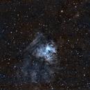 NGC1491 & OU1 en SHO,                                Georges