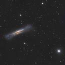 Hamburger in the Sky  -  NGC3628  - Celestron 8,                                Arnaud Peel