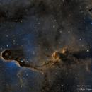 IC1396 - Elephant's Trunk Nebula,                                Crisan Sorin
