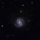 M100 Spiral Galaxy,                                Matteo Mooren