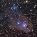 Reflection nebula NGC 5367  and cometary globule CG12.,                                Geoff