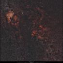 The Milkyway in Cygnus,                                Dominique Callant