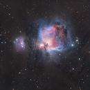 Orion Nebula / Running Man Nebula (false color),                                Chris Sullivan