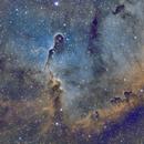 IC 1396,                                Gary