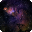 NGC2264 - Cold,                                Rich Sky