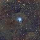 Iris Nebula - NGC7023,                                AstroThumb