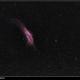 NGC 1499 California Nebula,                                Michael Kohl