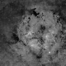 Widefield of IC1396,                                Mark Bahu