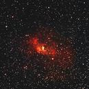 C11 Bubble Nebula,                                Steve Lenti