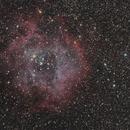 Rosette Nebula,                                Henry Kwok