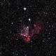 Wizard Nebula,                                Geert Vanden Broeck