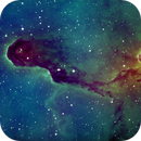 IC 1396 A - Elephant's Trunk Nebula,                                Stefan Schimpf