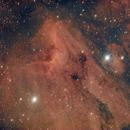 IC 5070 Pelican Nebula,                                Katie