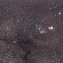 Orion Wide Field,                                FionaMorris6