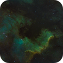 NGC7000 - North America Nebula,                                Mark Spruce