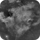 NGC 7000,                                Wahiba