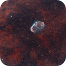 Crescent and Soap Bubble Nebulae Bicolor HOO,                                Nico Carver