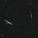 NGC  4631 and  NGC 4656,                                Roger Menard