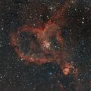 IC 1805,                                tringuede