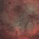 IC1396 Elephant Trunk Nebula HOO SHO-AIP2,                                Richard White