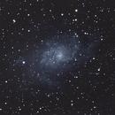 Triangulum Galaxy,                                Dan West