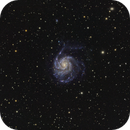 M101 - Pinwheel Galaxy,                                Sasho Panov