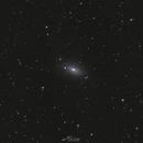 M63 Sunflower Galaxy,                                Paweł Radomski
