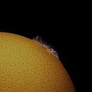 Sun with Prominence,                                RonAdams
