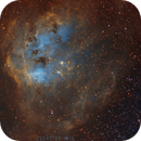 La Nébuleuse des Tétards - IC410 - EN SHO,                                Cedric