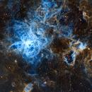 The Tarantula Nebula,                                Chris Parfett @astro_addiction