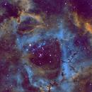 Rosette Nebula,                                Gregory Hood