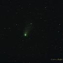 Comet Garradd - C/2009 P1,                                NewLightObservatory