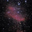 IC4628 in Scorpius - Prawn Nebula,                                Marcelo Alves