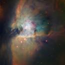 M42 The Trapezium - Hubble Palette,                                Eric Coles (coles44)