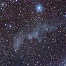 IC2118 - Witch Head Nebula,                                Chin Wei Loon