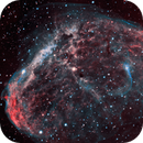 The Crescent Nebula,                                Don Curry