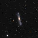 NGC3628,                                Piotr Ambroziak