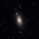 Sonnenblumen Galaxie M63,                                Karoass