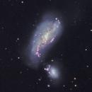 NGC 4490,                                Frank Colosimo