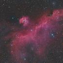 IC 2177 - Seagull Nebula,                                bingocrepuscule