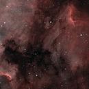 IC4070 et NGC7000,                                Selim VOIS