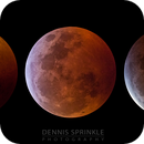 2019 Lunar Eclipse Progression,                                Dennis Sprinkle
