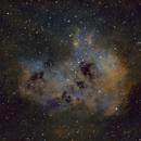 IC410 Tadpole Nebula SHO,                                Mathias Radl