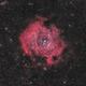 Rosette Nebula,                                BramMeijer