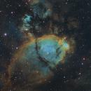 IC 1795 SHO Crop,                                Martin Voigt