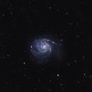 Messier 101,                                Roy Hagen